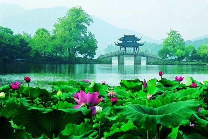 第四天   杭州