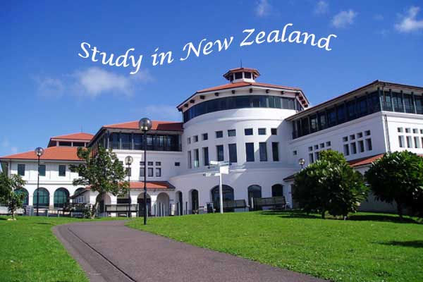 study in new zealand Massey University.jpg