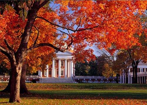弗吉尼亚大学.jpg