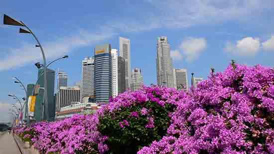 新加坡风景.jpg