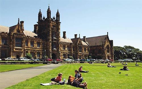 澳洲名校:那所坐落在蓝樱花下的悉尼大学