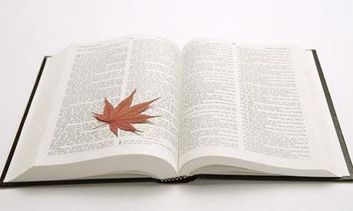 加拿大留学申请文书PS长度多少最合适呢?