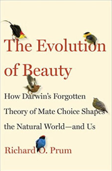 The Evolution of Beauty cover.png