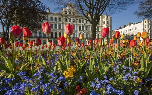 英国春天.jpg