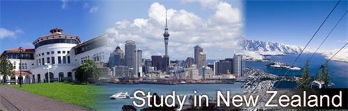 留学新西兰.jpg
