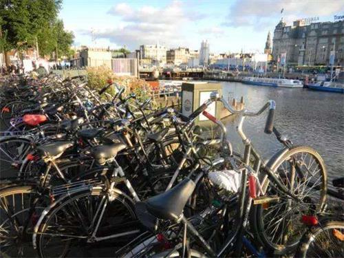 荷兰生活.jpg