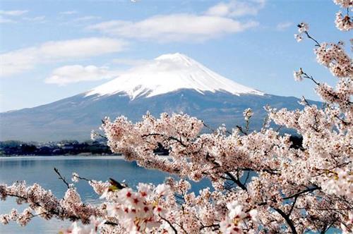 日本留学与就业.jpg