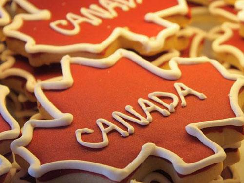 """加拿大""""四大""""雅思要求,不看你会后悔"""