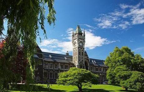 新西兰艺术留学,面试技巧来一波!