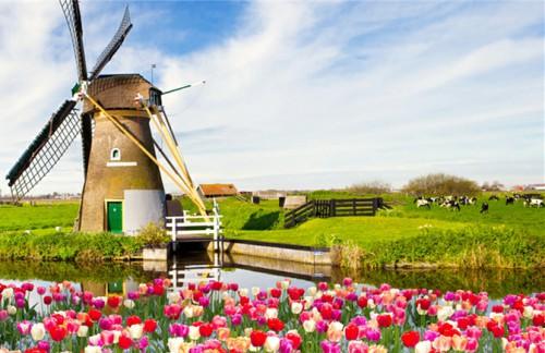 荷蘭1.jpg