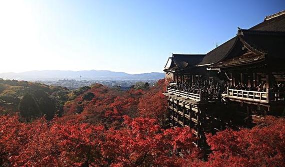 日本风景.jpg