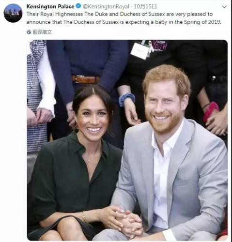 梅根王妃和哈里王子.jpg