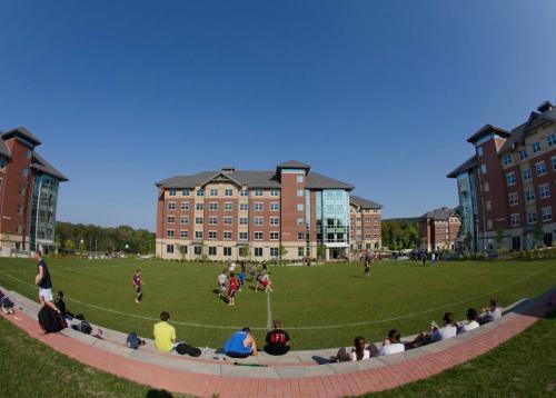 宾汉姆顿大学.jpg