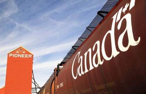 加拿大留學:選對專業你就贏在了起跑線!