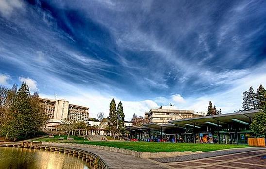 新西兰怀卡托大学.jpg