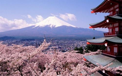 《2040年日本高等教育总体设计》报告出炉!日本留学或迎小高峰!