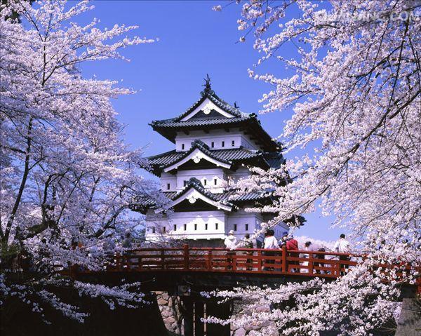 2019年-2020年日本读研时间规划,开始准备喽!