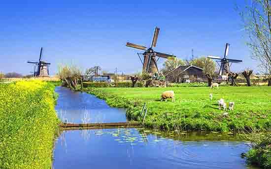 荷兰.jpg