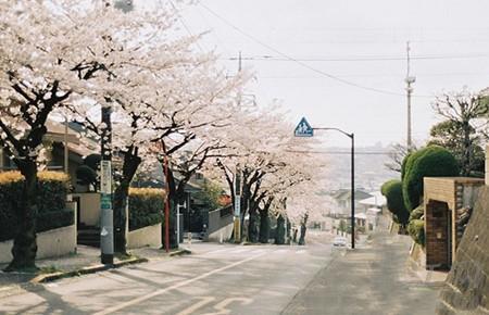 日本留学03.jpg