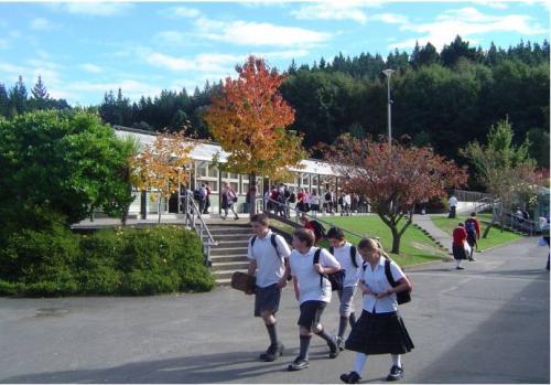 新西兰中学放学后.jpg