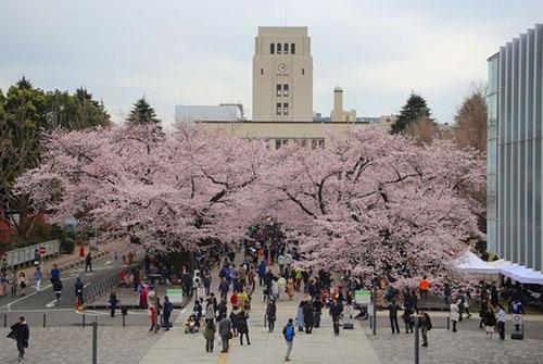 东京大学3.jpg