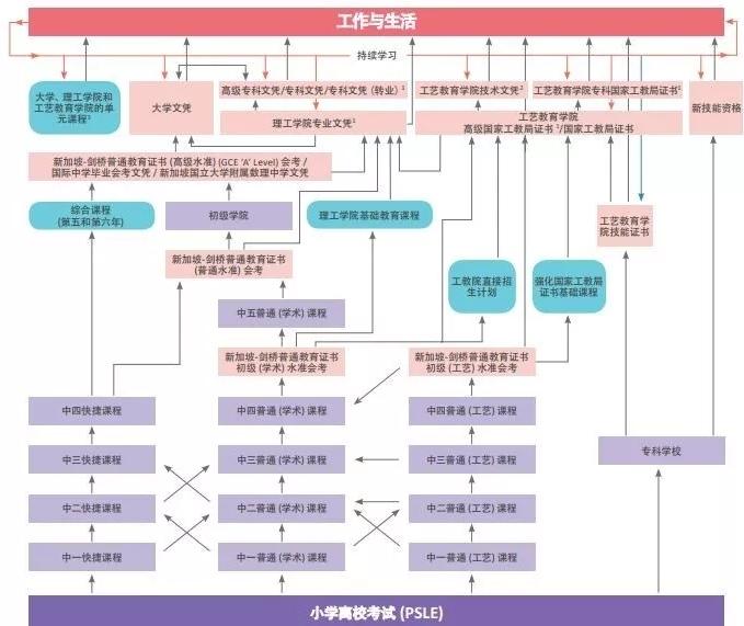 中学流程.jpg