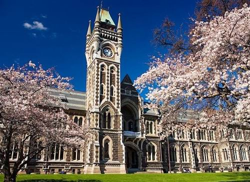 听说新西兰众多大学学费又涨价了,你的钱包在哭泣!