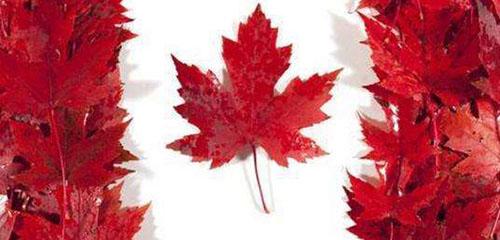 加拿大留学名校地图,这些大学应提前了解!