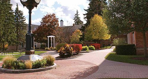 新西兰世界排名最高的大学,奥克兰大学的申请条件