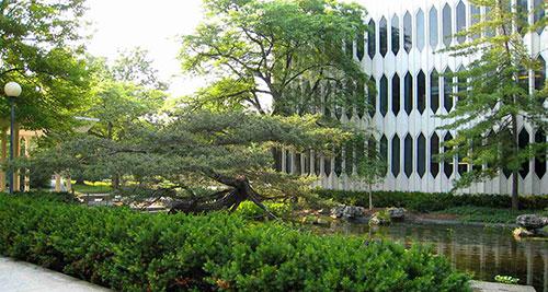 申请日语专业有哪些专业可以选择?
