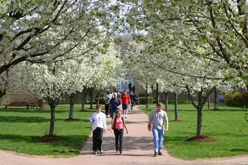 美国私立大学和公立大学选哪个