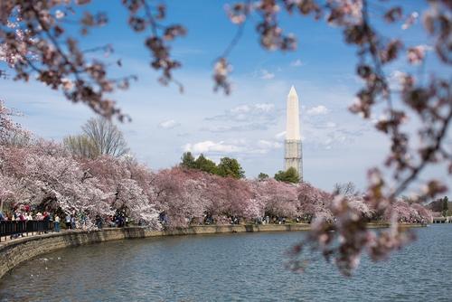 日本东京大学TMI项目申请条件、材料及时间一览!
