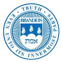 布兰迪斯大学